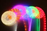2개의 철사 편평한 모양 LED 밧줄 빛