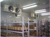 産業セリウムのSupermaketのための公認の通りがかりの冷蔵室の冷却装置またはフリーザー部屋