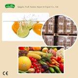 Пищевой порошок белого цвета, витамин C