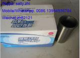 Weichai Deutz 226b 엔진을%s 13056682 아주 새로운 실린더 강선