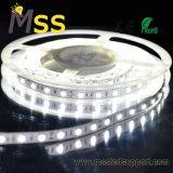 Fita LED 5050 SMD impermeável LED Backlight Strip 24V