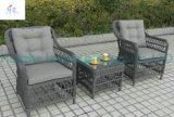 Hz-Bt126 Patio extérieur canapé en rotin canapé en osier meubles de jardin
