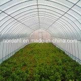 Filme Plástico span único túnel agrícolas das emissões
