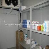 Pièce pharmaceutique d'entreposage au froid pour l'hôpital depuis 1982