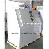 Auto-Degelar a caixa de armazenamento de congelação do gelo DC-600 para a venda