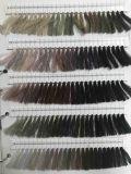 Hilo de coser teñido cuerda de rosca 100% de la materia textil del poliester del color de la tela