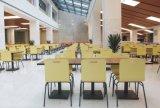 Хорошего качества в современном стиле стали Bentwood Multi-Color обеденный стул