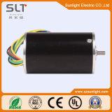 12V 24V Mircro 소형 BLDC 전기 DC 무브러시 Pm 모터