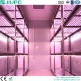 Incubatrice di sviluppo di pianta con il sistema di illuminazione ad alta intensità del LED