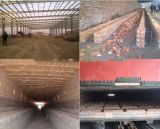 De automatische Baksteen die van de Klei Installatie met Tunnel maakt