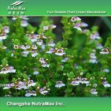 100% натуральные травы Eyebright выдержка 5 - 1, 10: 1 Tlc