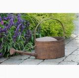 Het roestige Water van de Pot van de Planter van de Bloem van Indoor&Outdoor van de Tuin van het Tin kan Gieter