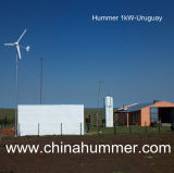 Rooftop를 위한 가정 Wind Power Generator Set 1000W