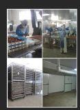 Обслуживание собаки для всех разводит цыпленка & белой косточки кальция