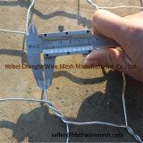 Cestini Twisted galvanizzati usura della rete metallica di Gabion del doppio e resistenza di abrasione