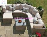 Im Freien rattan-Patio-Möbel-Sofa-Schnittcouch des Hinterhof-Hz-Bt35 Weideneingestellt - Meer blau