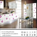 Zhの紫外線絵画カラー食器棚(ZH6616)