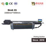 impressora UV do efeito 3D, máquina de impressão 3D principal de Ricoh G5 com alta qualidade