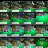 0.5-5t/H小規模のぬれたタイプ新しいやしフルーツの束オイルのプロセス用機器