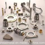 Präzision CNC-maschinell bearbeitenteile mit Aluminium/Messing/dem Edelstahl (ANGEPASST)