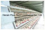 Cage Breeding galvanisée de couche de batterie de machines de ferme de poulet avec le matériel alimentant automatique