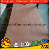 Bb/Bb, BB/CC pila de discos la madera contrachapada roja de la chapa (1.3m m -5.0mm)
