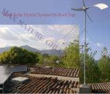 Sistema micro Mouted de la generación de las energías eólicas en la tapa de la azotea para el hogar