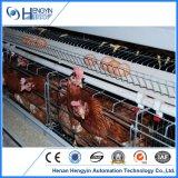 Gaiola da galinha do engranzamento de fio para explorações agrícolas de galinha