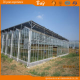 Serre chaude en verre de Multi-Envergure de transmittance légère élevée de conception moderne