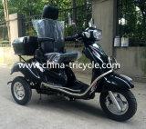 Siège et dossier confortable pour scooter handicapé de 110 cc (DTR-5B)