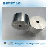 Magneet van de Assemblage NdFeB van Permaent de Magnetische met RoHS