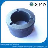 ポンプによって焼結させるMultipoleリング磁石のための堅い亜鉄酸塩