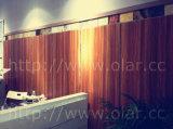ファイバーのセメントのボード--装飾的な紫外線及び過フッ化炭化水素の表面