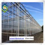 Van de multi-spanwijdte het LandbouwType van Serre van het PC- Blad