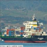 Herstellung u. Versand-Transport von China zu globalem verarbeitend