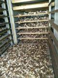 Economia de energia industrial 75% do secador da bomba de calor do desidratador das frutas