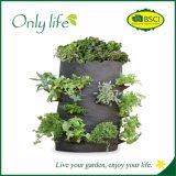 Saco de vegetais reutilizáveis de vegetais e fruticultura