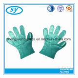 Qualität Wegwerfplastik-PET Handschuhe