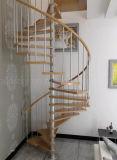 As melhores idéias espirais de vidro do projeto da HOME da escadaria do aço inoxidável do preço