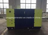 Diesel van het Type 50kVA van Prijs van de Verkoop van de fabriek Stille Generator