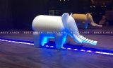 Принтер 3D изобретателя Zhejiang Yiwu ПРОФЕССИОНАЛЬНЫЙ ягнится творческое культивирует