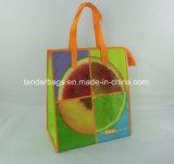 絶縁された昼食袋のピクニッククーラー袋
