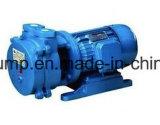 Wasserringvakuumpumpe, die ist gut für explosive Gase und Gas WAPOR
