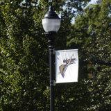 Steun van de Affiche van het Beeld van de Banner van de Reclame van Pool van de straatlantaarn de Openlucht