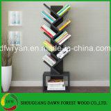 Изготовление Китая Bookcase высокого качества