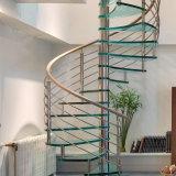 Escalera en Espiral de cristal con acero inoxidable Raillling