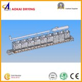 Ds-Serien-Hochtemperaturkatalysator-trocknende Maschine