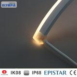 IP68 indicatori luminosi esterni delle lampade LED della striscia SMD 5050 della parete LED