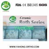 Orthodontische Ceramische Steunen - Steunen van de Basis van het Netwerk de Transparante Ceramische
