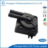 Mini pompe 12V sans frottoir de C.C pour le liquide refroidisseur de DEL